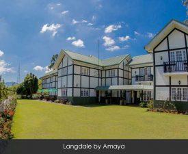 langdale-amaya